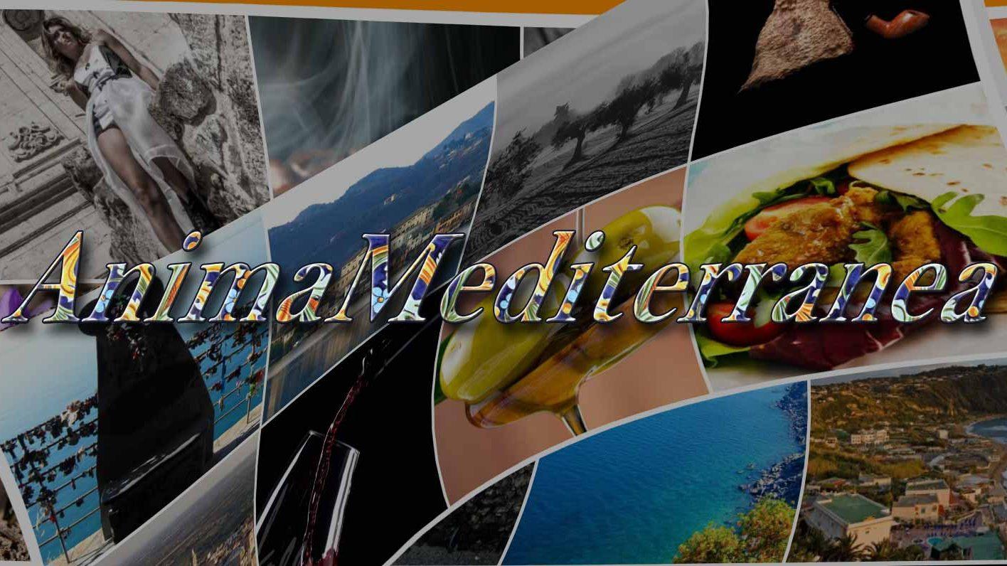 Associazione Anima Mediterranea APS
